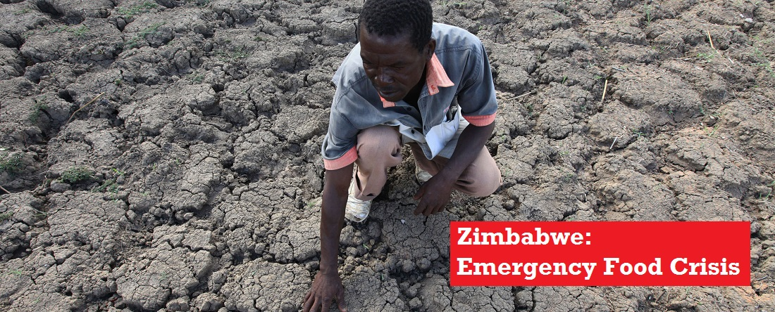 Farmer touches dry, cracked earth