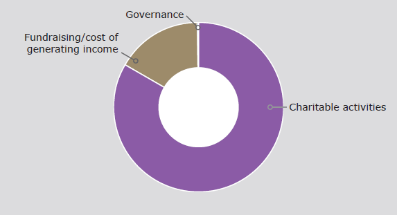 Pie chart showing Expenditure in 2016-17